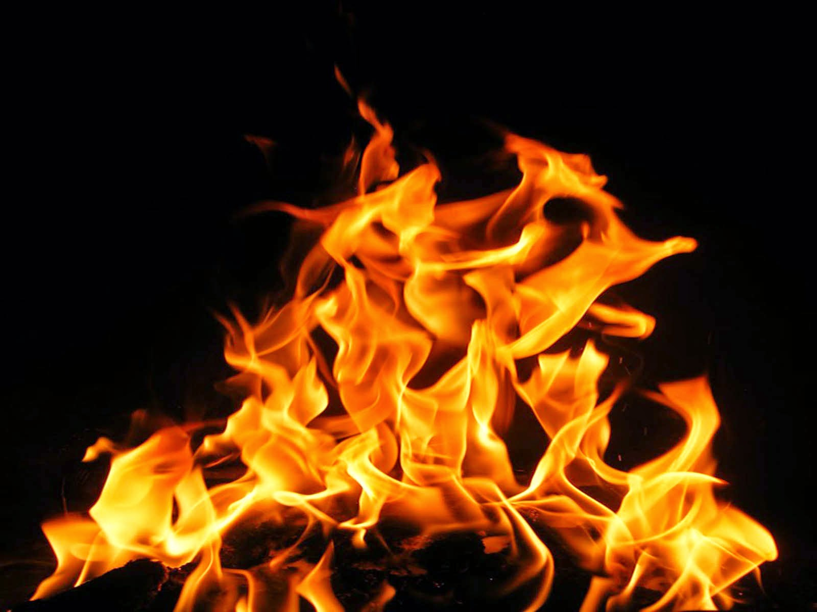 Where There is No Wood the Fire Goeth Out